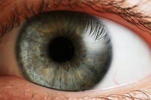 """Eye_Iris, """"Petr Novák, Wikipedia""""  (CC BY-SA 2.5)"""