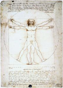 Hombre de Vitruvio - Leonardo da Vinci.  Dominio público.