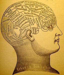 Phrenology - Imagen de dominio público